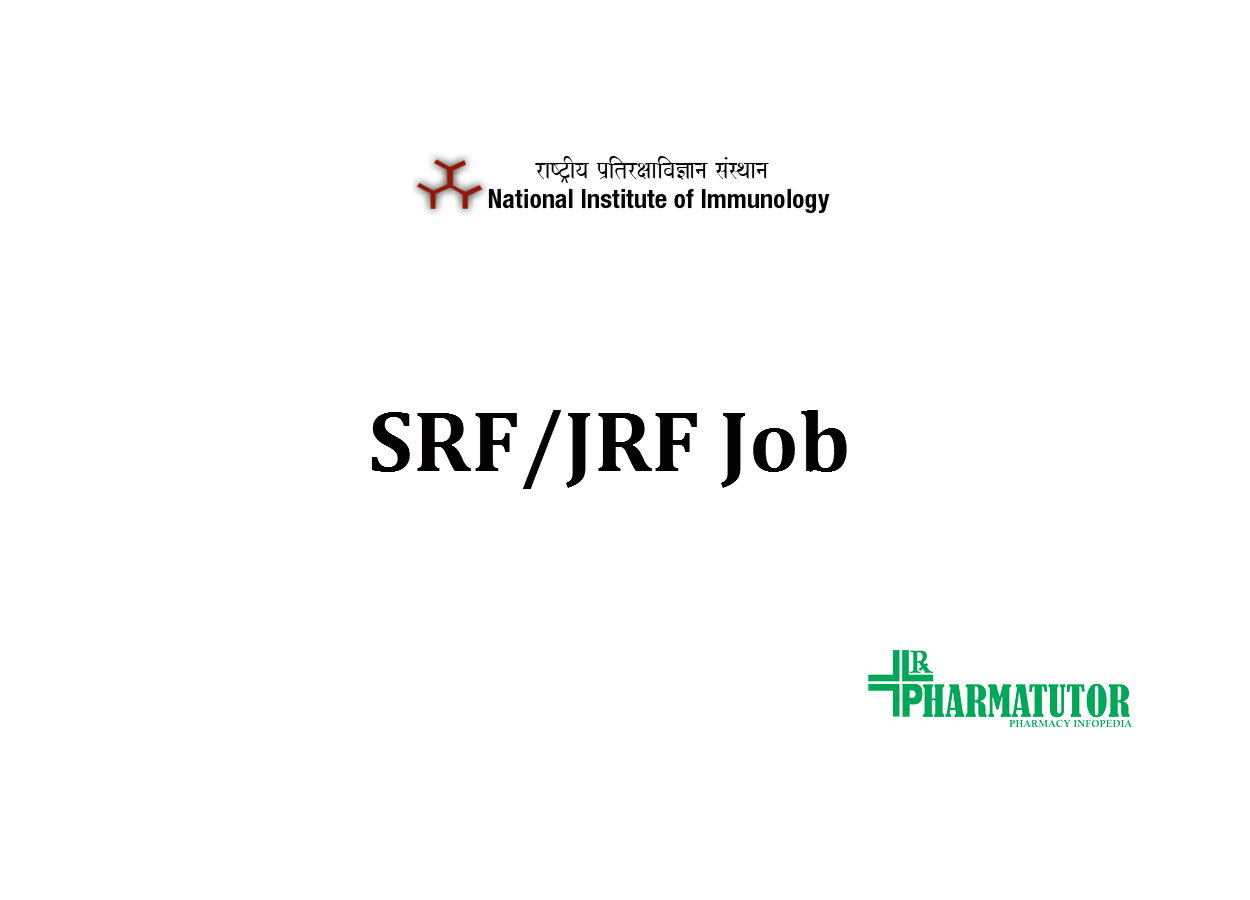 JRF SRF Job at NII