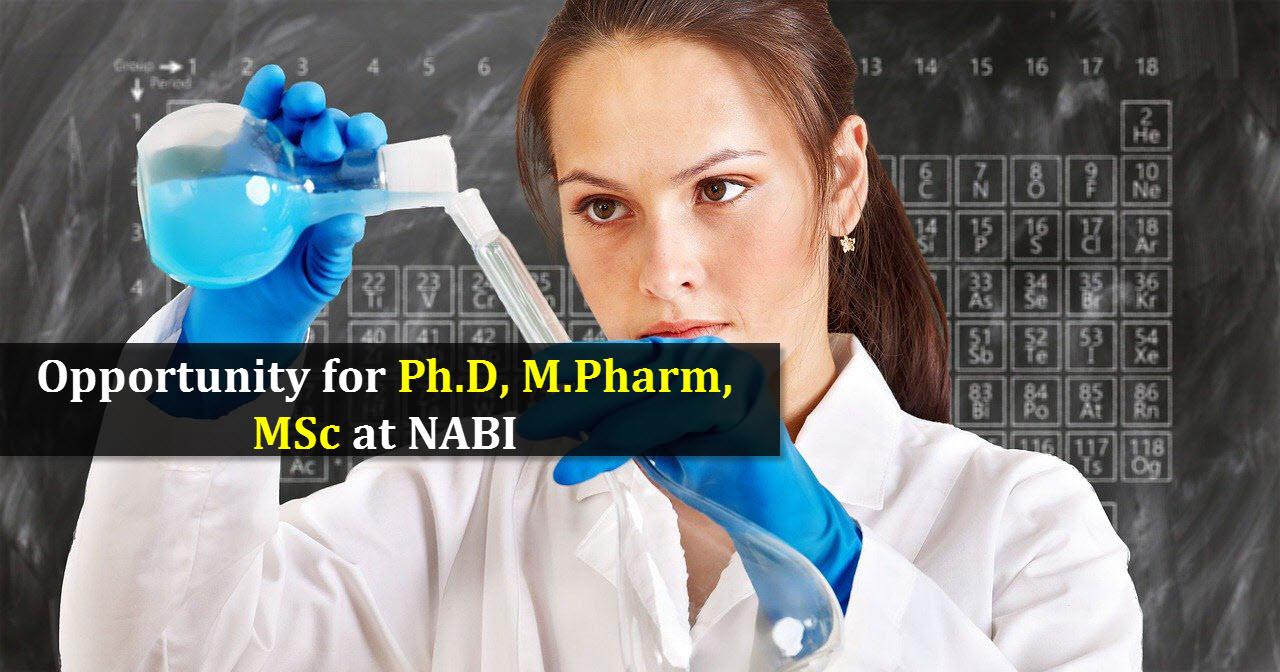 Opportunity for Ph.D, M.Pharm, MSc at NABI