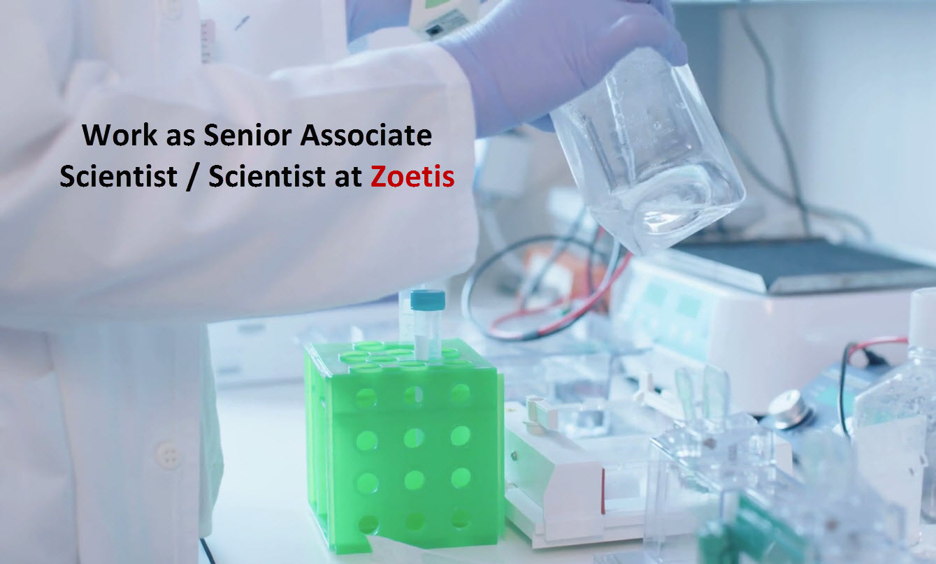 scientist job at zoetis